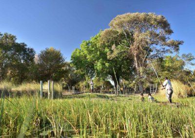 gallery-camp-mokoro