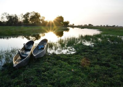 An Okavango Delta safari